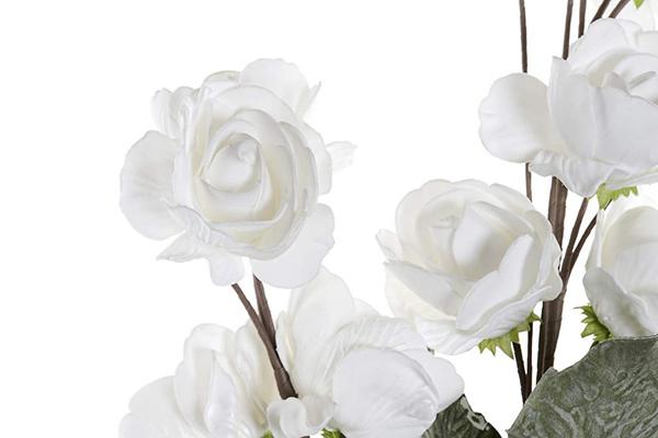 Bele ruže 22x22x101