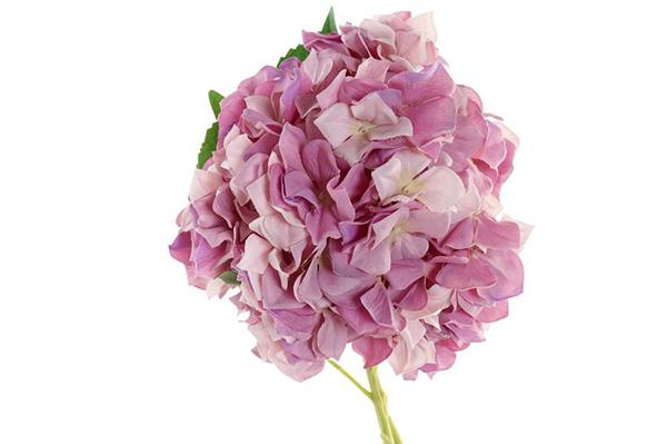 Cvet hortenzija 15x15x80 2 modela