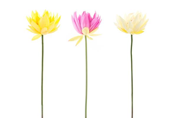 Dekorativno cvet lily pvc polyester 80cm 3 boje
