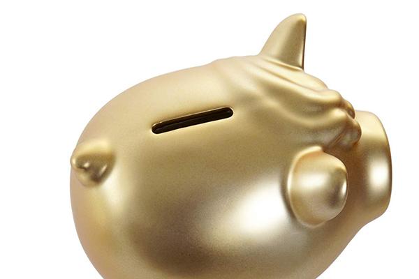 Kasica little pig 12x15x13 2 modela