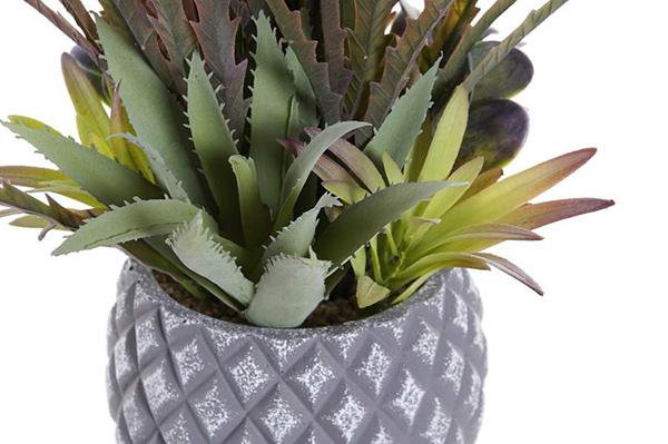 Ukrasna biljka 31x28x29 2 modela