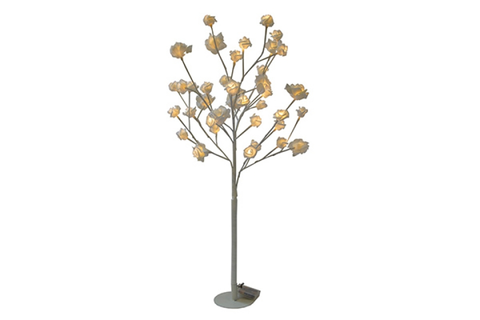 Belo drvo ruže 90x37