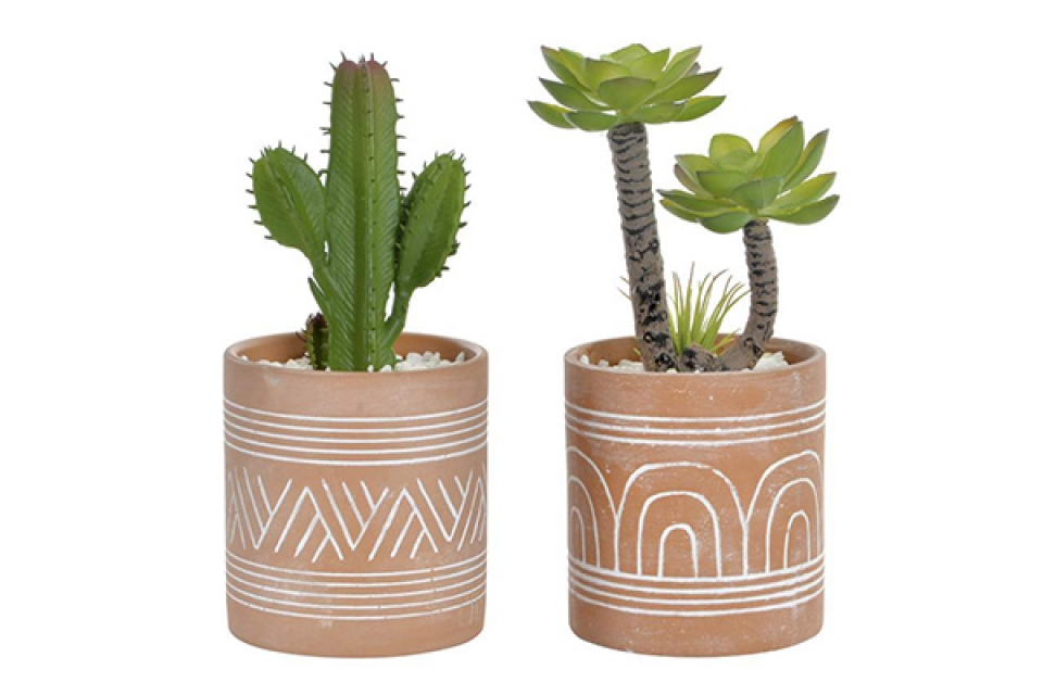 Dekorativna biljka u saksiji 8,5x8,5x19,5 2 modela