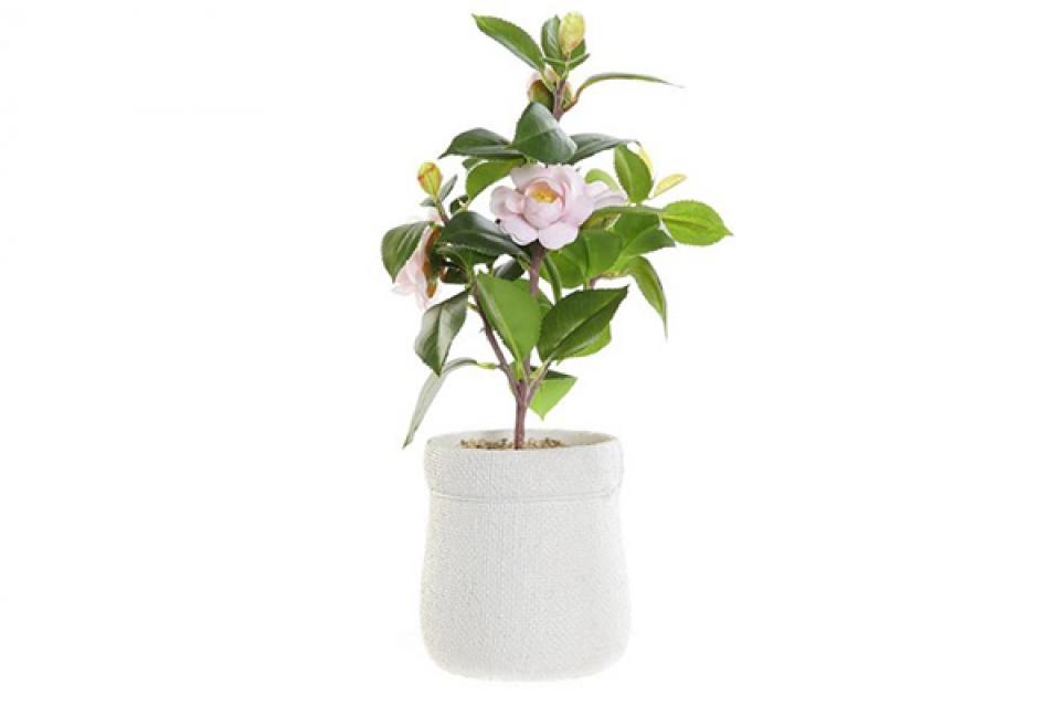 Dekorativna biljka u beloj saksiji 23x18x38