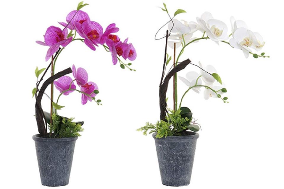 Dekorativna orhideja 32x20x43 2 modela