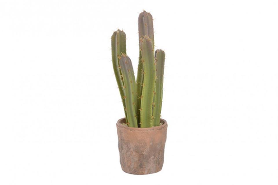 Dekorativni kaktus u saksiji 15x16x42