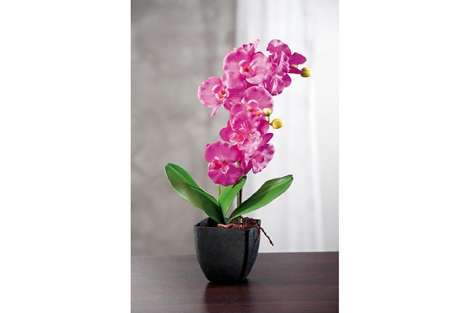 Dekorativno cveće orhideja 10x10x42 3 modela
