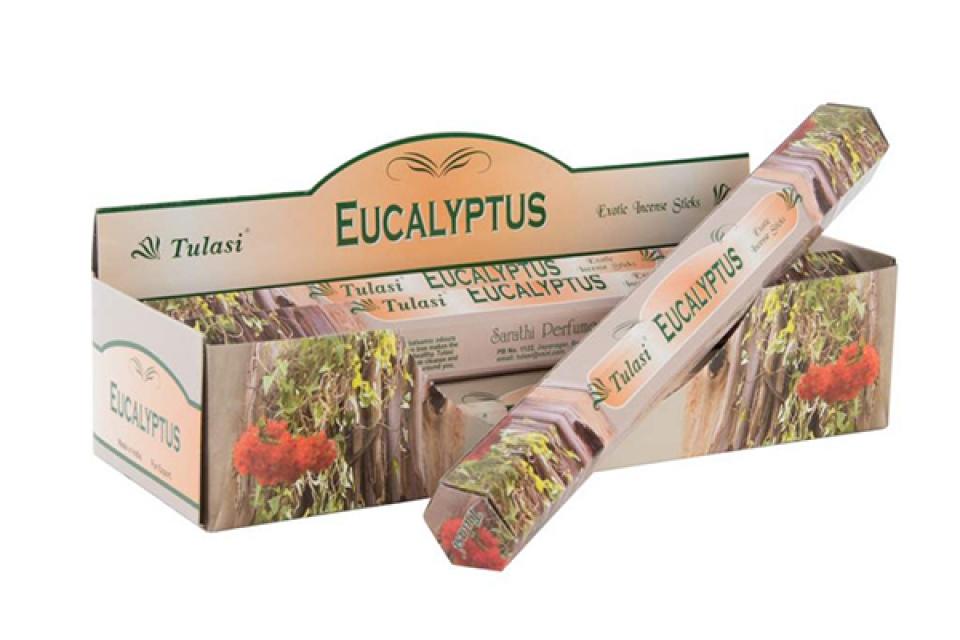 Mirišljavi štapići eukaliptus / 20 25 cm