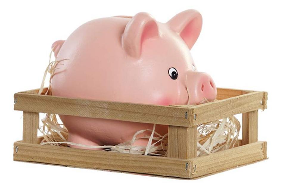 Kasica little pig pink 15x11,6x12 little pig pink