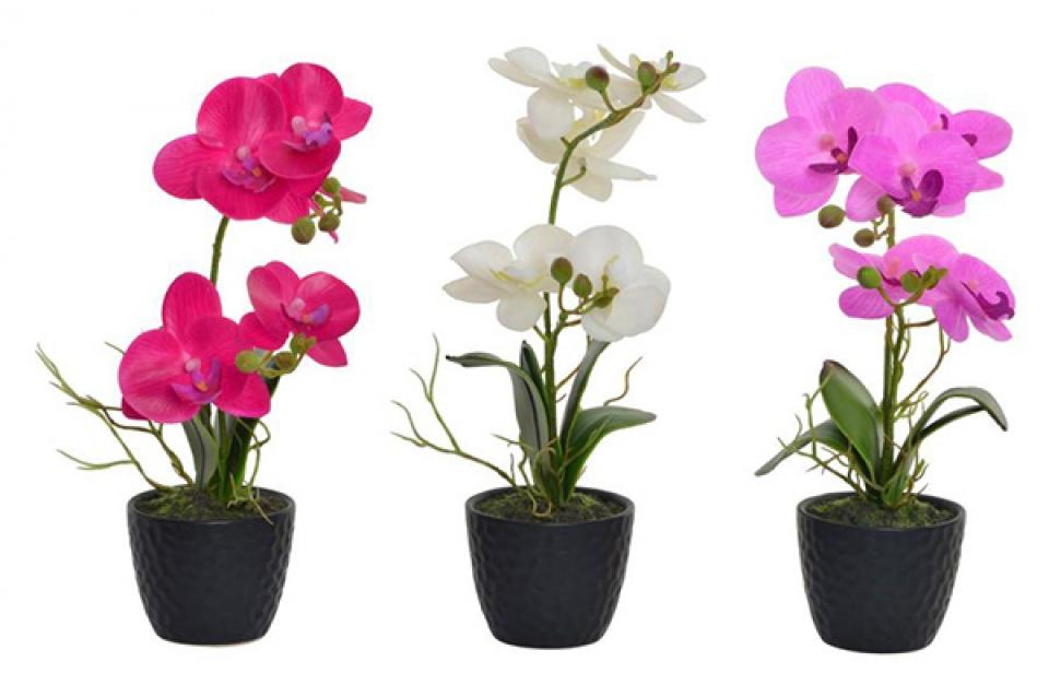 Orhideja u boji 9,5x32 3 modela