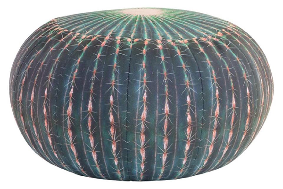 Podni jastuk kaktus 50x25 330 gr.