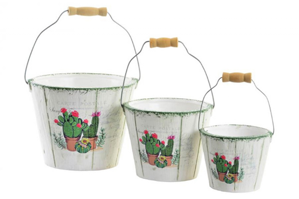 Set kantica kaktus / 3 13 x 18