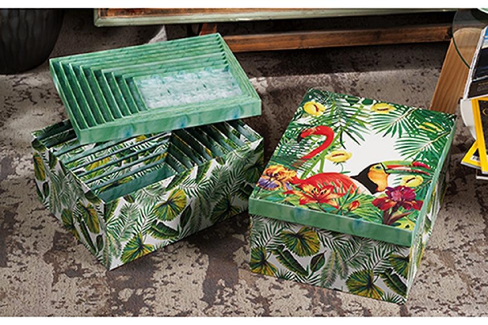 Set kutija tropical / 10