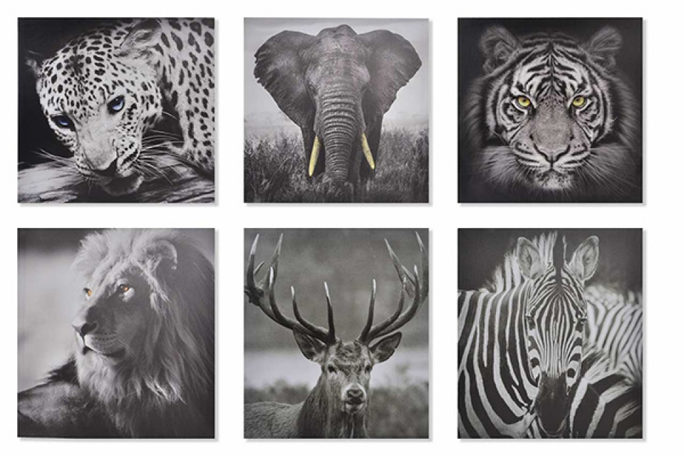 Slika animals 40x1,7x40 6 modela