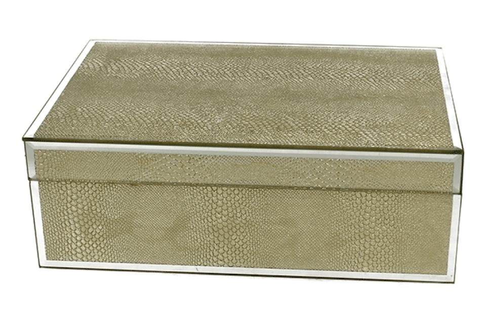 Staklena kutija gold snake 24,5 cm