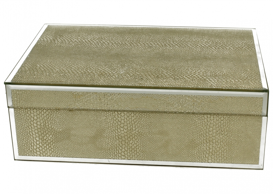 Staklena kutija gold snake 24,5 x 17,5 cm