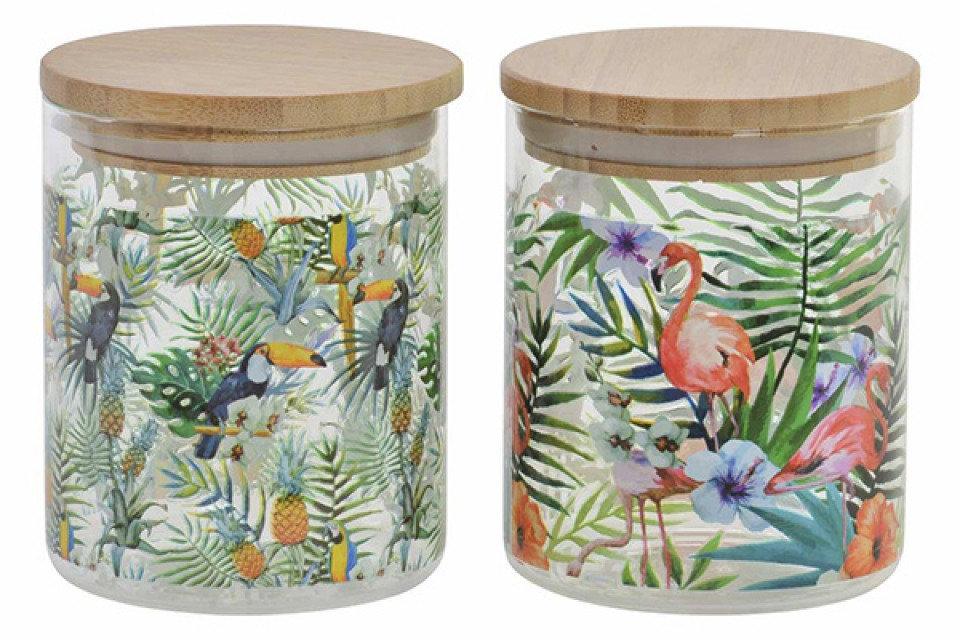 Tegla tropical 10x12,5 700ml. 2 modela