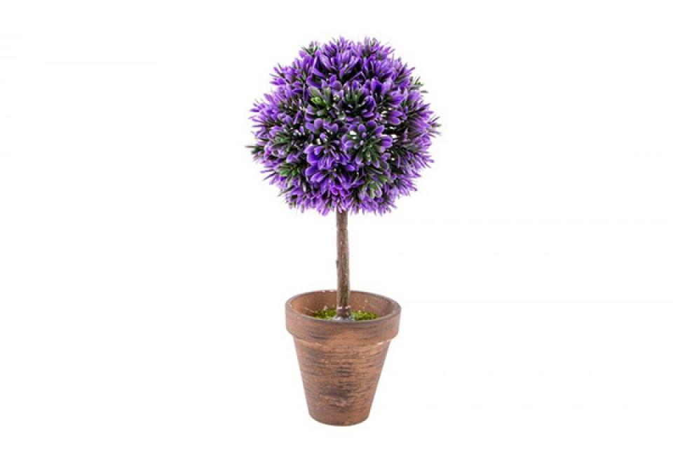 Ukrasno cveće lavanda 12x26